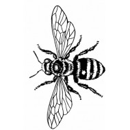 JudiKins Big Bee Cling Rubber Stamp