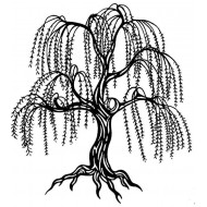 Weeping Willow Cling Rubber Stamp