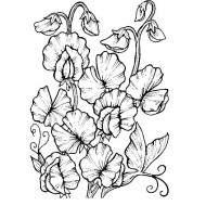 Sweet Pea Botanical Cling Rubber Stamp
