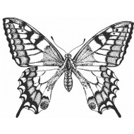 Old World Swallowtail Butterfly Cling Rubber Stamp