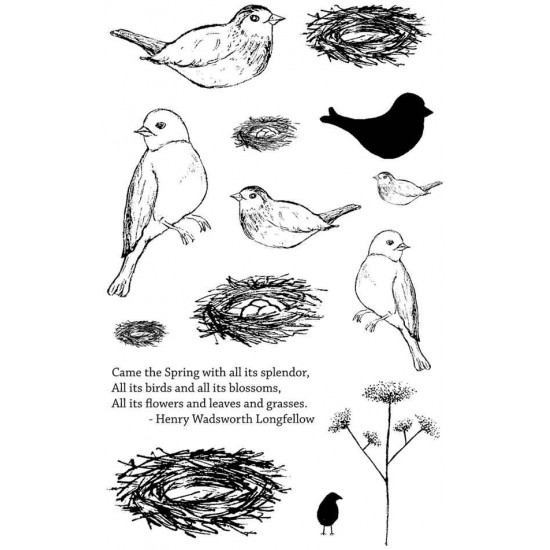 Feathered Nest Rubber Stamp Set