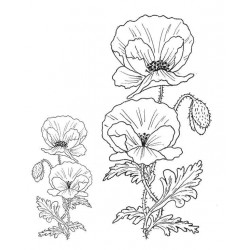 Poppies rubber stamps