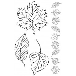 Leaves Rubber Stamp Set