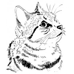 Friendly Cat Rubber Stamp