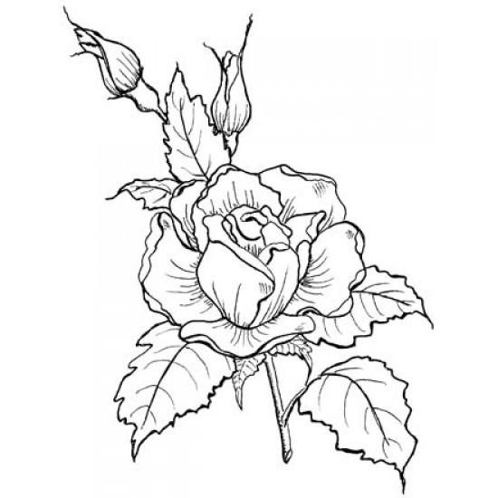 Large Rose Rubber Stamp