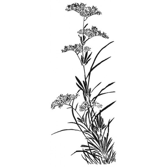 Large Wildflower Rubber Stamp