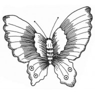Lucy's Butterfly Large Rubber Stamp