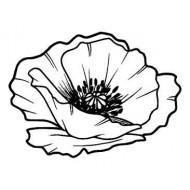Sm Poppy Head rubber stamp by Teri Sherman