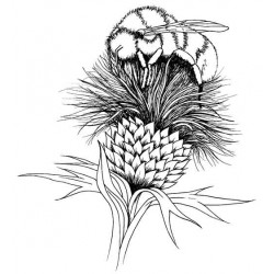 Bee on Thistle Cling Rubber Stamp
