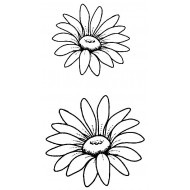 Teri's Daisies Unmounted Rubber Stamps