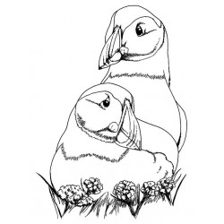 Puffin Love cling mounted Rubber Stamp