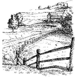 Farmland Rubber Stamp